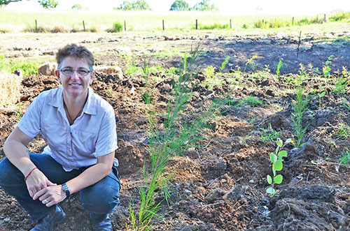 Rural landholder funding now available to enhance biodiversity